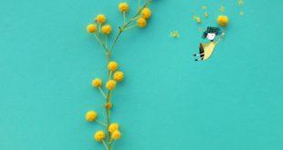 Цветочные арт-коллажи со сказочными героями